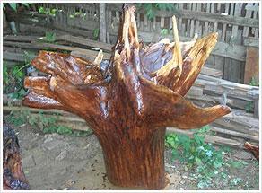 Корни дерева и поделки из них